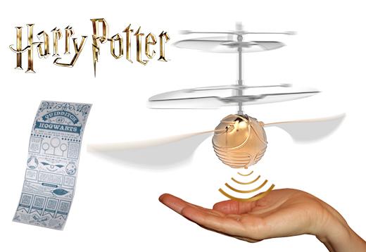Wer holt den Quidditch-Cup?_1